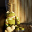 Royalty-Free Stock Photo: Green handmade knitted toy frog sitting in the last sunbeam of sunset on a brown corduroy and leather couch.