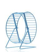 Blue hamster wheel — Stock Photo
