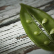 Sugar snap peas — Stockfoto #30532373
