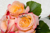 Wedding rings over roses — Stock Photo