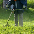 Stock Photo: Grass trimmer works