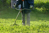 Grass trimmer works — Stock Photo