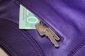 Keys and money — Foto de Stock