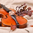 Stock Photo: Isolated violin and autumn leaves on brown background