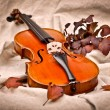 Isolated violin in fall season — Stock Photo