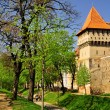 Old defence wall and tower in Sibiu(Hermannstadt), Romania — Stock Photo #22899410