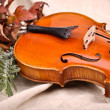 Violin and autumn leaves on brown background. — Stock Photo