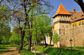 Old defence wall and tower in Sibiu(Hermannstadt), Romania — Stock Photo
