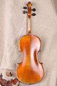 Violin back view isolated on beige background — Foto Stock