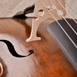 Stock Photo: Close up of violoncello isolated on beige background