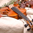 Close up of a violin and autumn leaves — Stock Photo #23474923