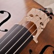 Close up of a violoncello isolated on beige background - Stock Photo