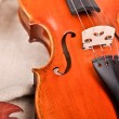 Close up of a violin and autumn leaves — Stock Photo