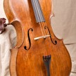 Stock Photo: Close up of violoncello on beige background