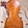Stock Photo: Violoncello back and autumn leaves