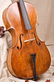 Close up of a violoncello on beige background — Stock Photo