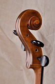 Close up of the head of a violoncello — Stock Photo