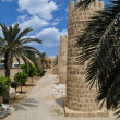 The Medina of Sousse constitutes an outstanding example of Arabo — Stock Photo