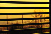 Sunset through a fence — Stock Photo