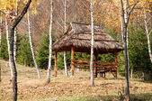 Wooden gazebo in the forest for relaxing — Stock Photo