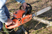 Man cuts tree with chainsaw, concept of deforestation. Selective — ストック写真