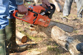 Man cuts tree with chainsaw, concept of deforestation. Selective — Foto de Stock