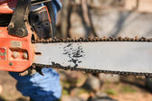 Blade of a chainsaw in the garden, copy space — Stock Photo