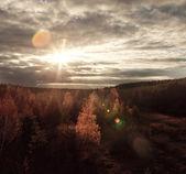 Zonlicht op herfst bos — Stockfoto