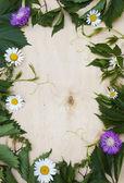 Drewno tło z zielonych liści i kwiatów — Zdjęcie stockowe