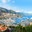 Monte Carlo city panorama. — Stock Photo #23508557