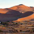 Royalty-Free Stock Photo: Namib desert, Namibia