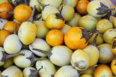 Eggplant yellow — Stock Photo