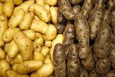 新鲜的农产品,在农贸市场 — 图库照片