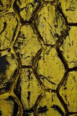 Texture of the old car tire as background — Stock Photo