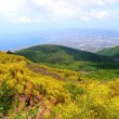 View of Naples from Slope of Vesuvius - Stock Photo