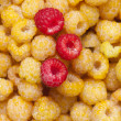 Raspberry — Stock Photo #31387909