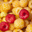 Raspberry — Stock Photo #31387931