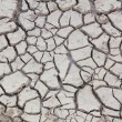 Crack of soil texture — Stockfoto