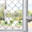 Edge of wire fence — Stock Photo
