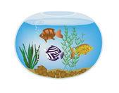 エキゾチックなカラフルな魚や海藻金魚鉢 — ストックベクタ