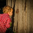 Young Boy Peeks in the Barn - Stock Photo
