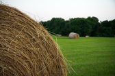 Round Hay Bales — Stock Photo
