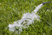 Water from the hose on the grass — Stock Photo