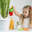 Girl pours from a watering can cacti — Stock Photo