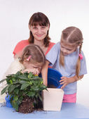 Mom and two daughters poured earth into a pot — Stock Photo