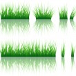 Grass — Stock Vector #22602401