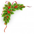 Christmas holly with berries. — Stock Vector