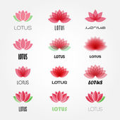 Vector lotus flowers design for spa, resort — Stock Vector