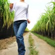 Woman running in sugarcane field — Stock Photo