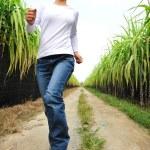 Woman running in sugarcane field — Stock Photo #23194182